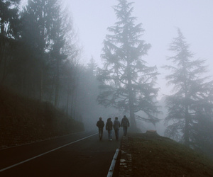 friends, forest, and photography image