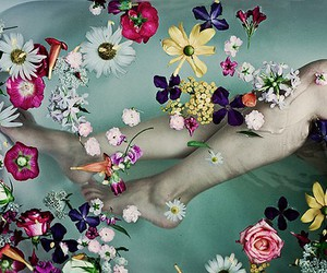 flowers, legs, and water image