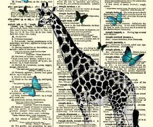 butterflies, dictionary, and giraffe image