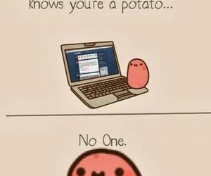 potato, internet, and funny image