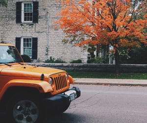 autumn, fall, and car image
