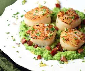 pancetta, peas, and scallop image