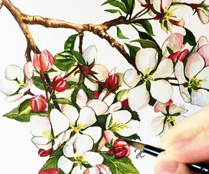 flowers, drawing, and appletree image