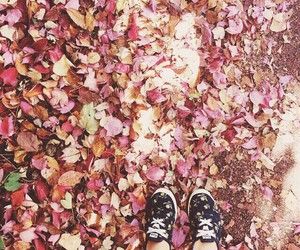 autumn, keds, and leaves image