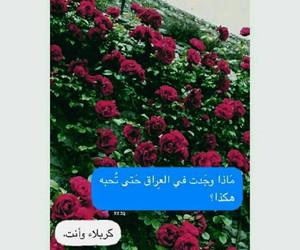 جُمال, الله, and مؤلمة image