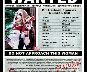 wanted, suicide squad, and harley quinn image
