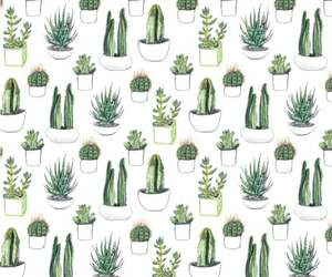 artsy, background, cactus, cool, equality, girly, grunge, iphone, patterning, patterns, rad, sad, softgrunge, wallpaper, darkgrunge