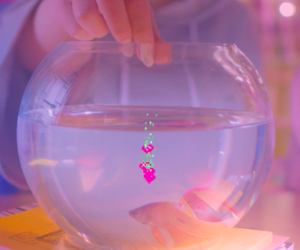 aesthetic, pink, and fish image