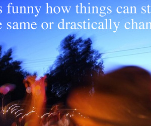 blur, funny, and quote image