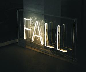 fall, neon, and light image