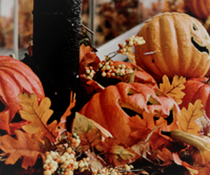 autumn, background, and Halloween image