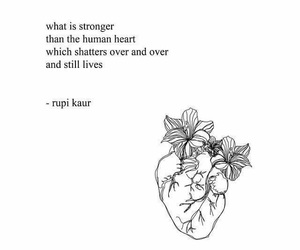 quotes, heart, and rupi kaur image