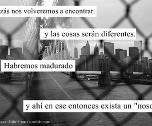 frase, frases, and phrases image