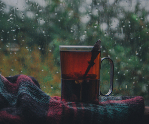 tea, autumn, and rain image