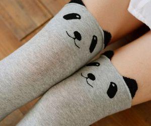 panda, cute, and fashion image