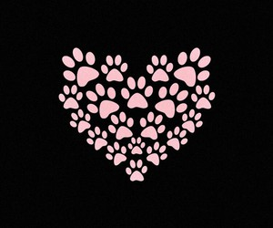 background, heart, and pink image
