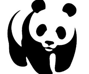 panda, WWF, and animal image