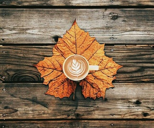 autumn, coffee, and october image