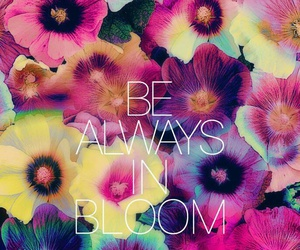 flowers, always, and quote image