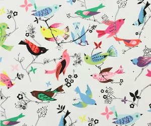 bird, wallpaper, and pattern image