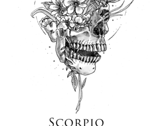 scorpio, zodiac, and horoscope image