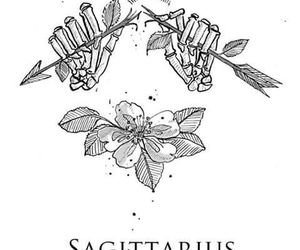 Sagittarius, flower, and quotes image