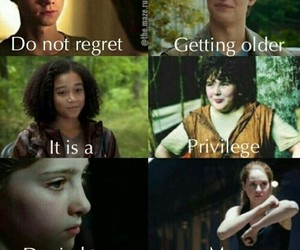 divergent, the maze runner, and the hunger games image