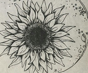 drawing, flowers, and sunflower image