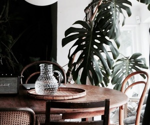 design, interior, and plants image