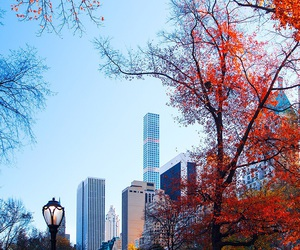 city and fall image