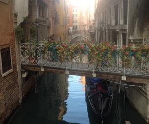 bridge, flowers, and venice image