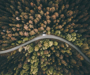 aerial, autumn, and beautiful image