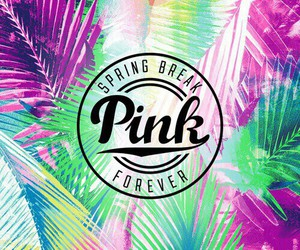 colorful, pink, and pink store image