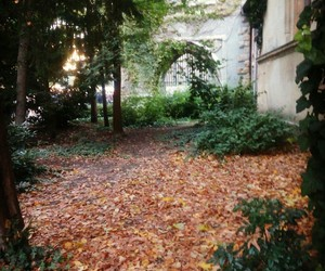 autumn, bp, and budapest image