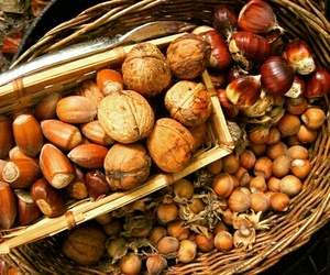 autumn, fall, and nuts image