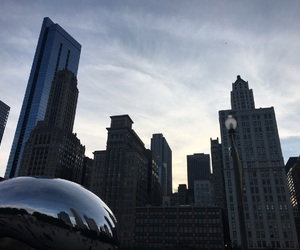 bean, chicago, and illinois image