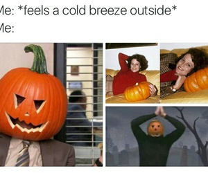 funny, lol, and autumn image