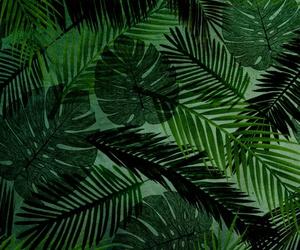 background, beach, and foliage image