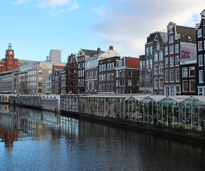 amsterdam, europe, and market image