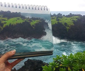 nature, art, and draw image