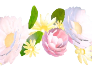 snapchat, png, and flowers image