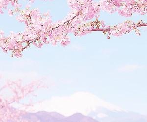 japan, pastel, and pink image
