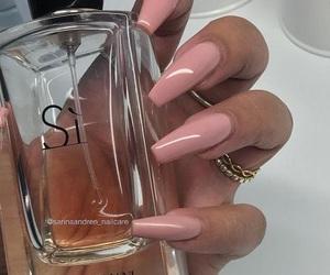 nails, pink, and Giorgio Armani image