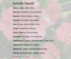 signs of the zodiac and suicide squad image