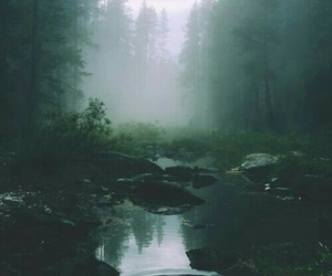 free, nature, and pretty image