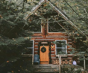 home, house, and tree image