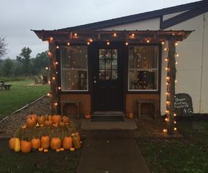 fall, pumpkins, and lights image