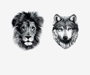 tattoo, lion tattoo, and tattoo inspiration image