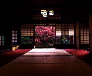japan, photo, and manabe470204 image