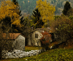 autumn, colors, and decay image